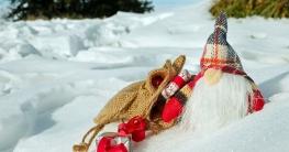 Lustige Weihnachtsgedichte Weihnachtsgeschichten.Ollis Weihnachtsgeschichten Lustige Weihnachten