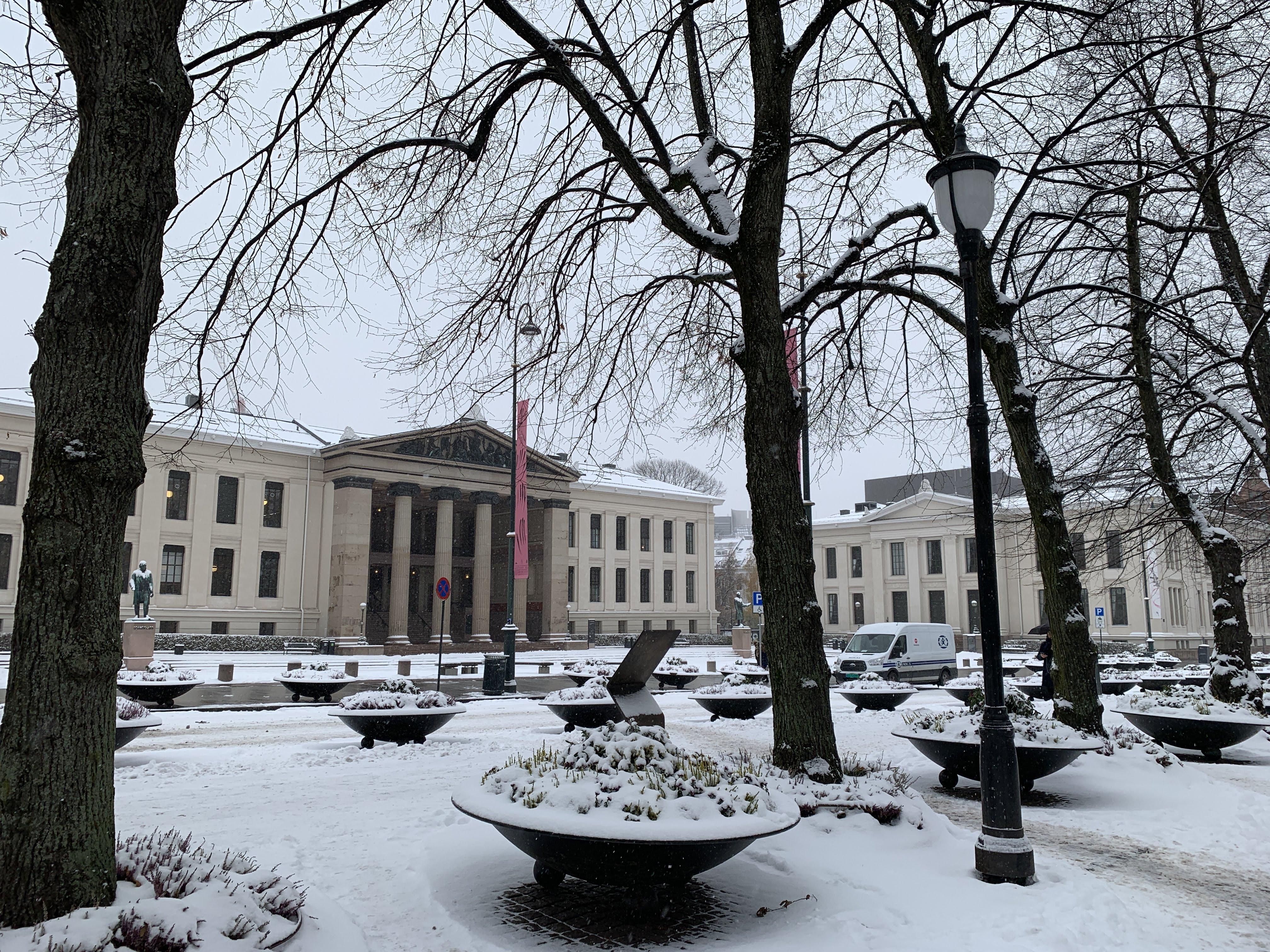 Oslo Schnee