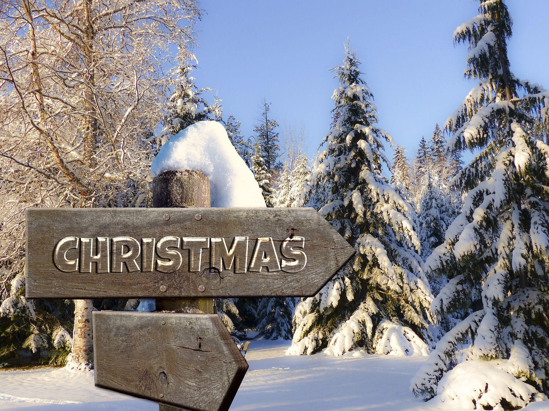 Schnee gibt es dieses Weihnachten wohl nur auf Bildern